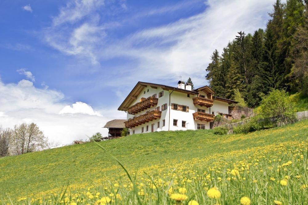 grunserhof blumenwiese Ferienwohnungen