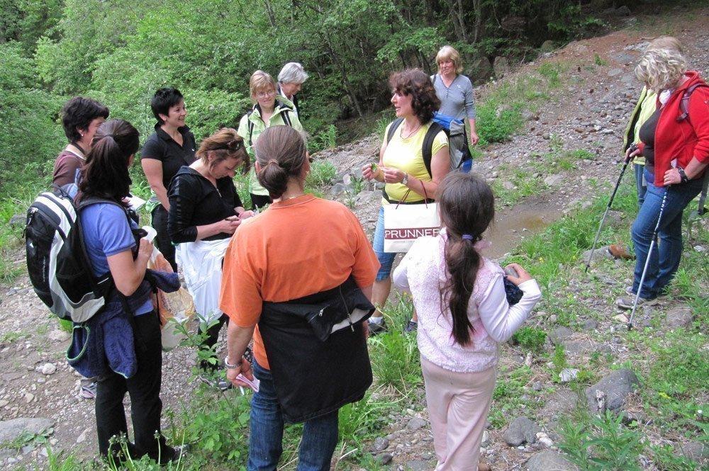 wildkraeuterwanderung Aromatic Herbs Hikes